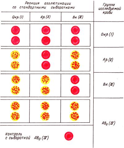Системы крови