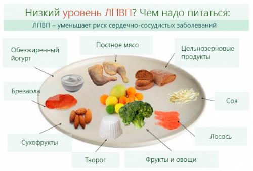 Показатели холестерин в крови таблица