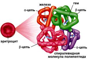 Что такое метгемоглобин
