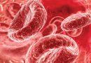 Роль гемоглобина в жизни человека