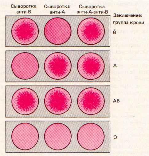 Условия забора крови