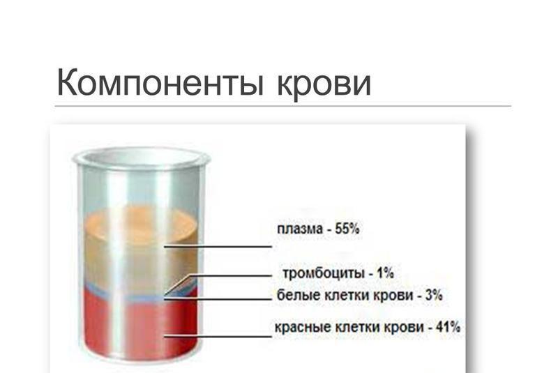 Применение крови и ее компонентов