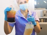 Очищение крови плазмаферезом