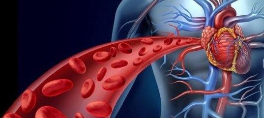 Комары и первая группа крови