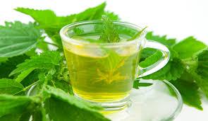 Очищающий чай из крапивы