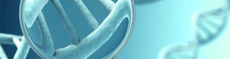 Определение антиспермальных антител в крови