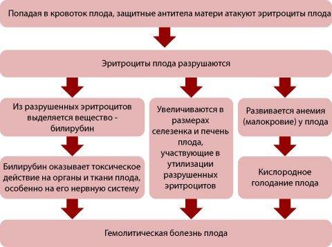 Другие показания для назначения анализа