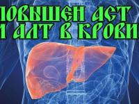 Биохимический анализ крови на АСТ и АЛТ