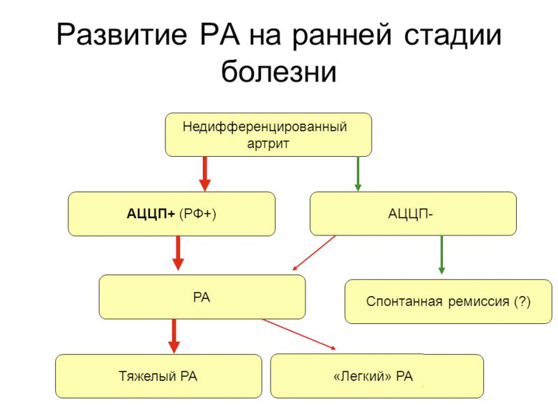 Анализ АЦЦП инвитро