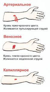 Анатомическая систематизация кровотечений