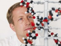 Анизоцитоз в клетках крови