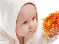 Содержание лейкоцитов в крови у ребенка