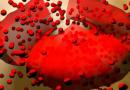 Показатели билирубина в крови