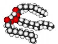 Для чего исследуют триглицериды в крови