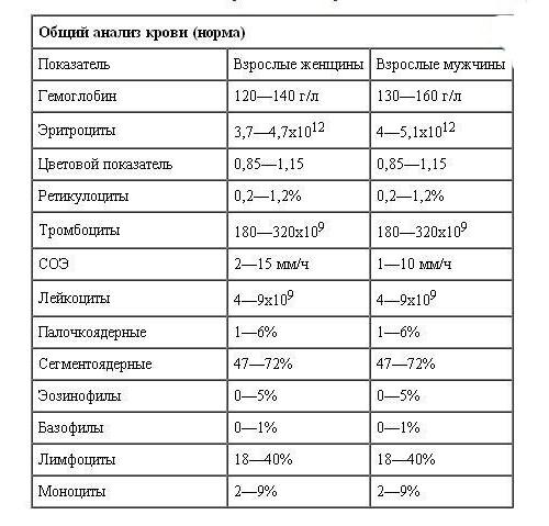 лейкоцитоз повышенные лейкоциты в крови: норма или патология