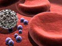 Что такое кровь и из чего она состоит