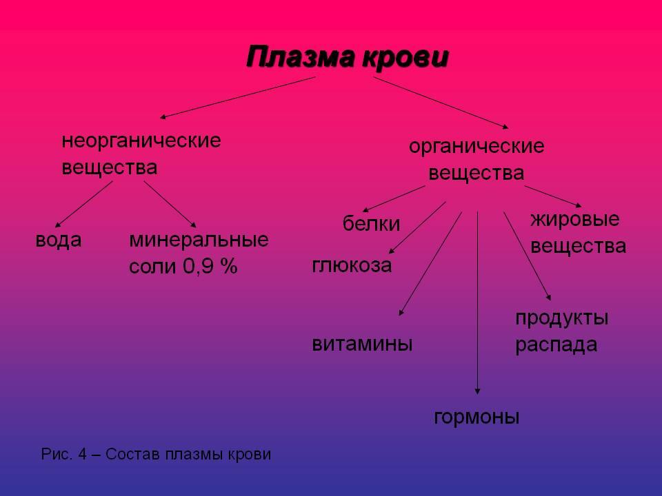 Состав плазмы
