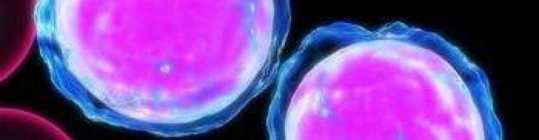 Почему понижаются лейкоциты в крови