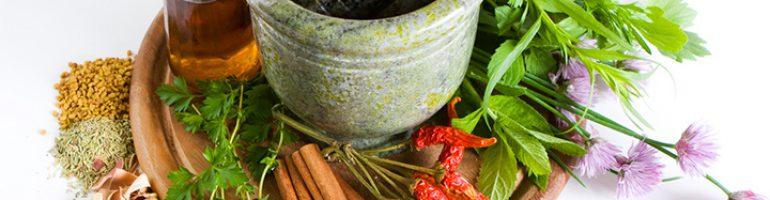 Популярные лекарственные травы для разжижения крови