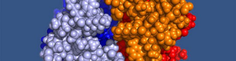 Для чего назначают анализ на с-реактивный белок