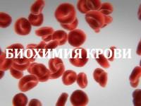 Что можно узнать по биохимическому анализу крови
