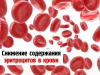 Почему могут понижаться эритроциты в крови