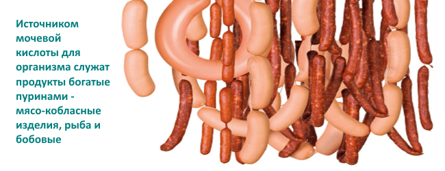 Роль белка в организме