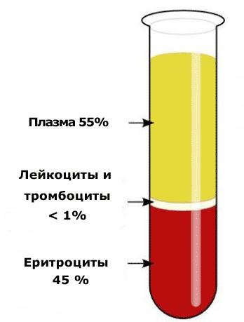 РОЭ в анализе крови: что это такое, норма для женщин, детей ...