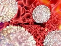 Какая норма показателей лейкоцитов у женщин