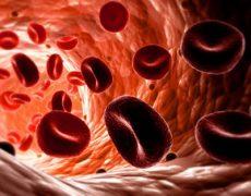 Средний уровень гемоглобина в эритроците (МСНС)
