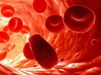 Что означает повышение эритроцитов в крови
