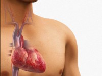 Что такое гипертрофия правого желудочка сердца