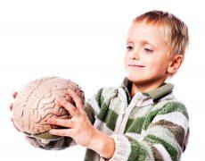 Гидроцефальный гипертензионный синдром мозга
