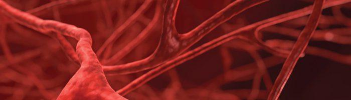 Что такое эмболизация маточных артерий