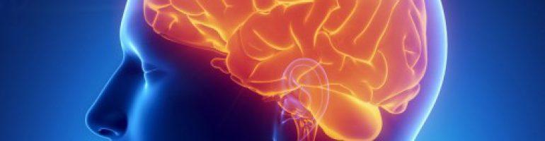 Что такое отек головного мозга