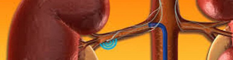 Что это такое почечная гипертензия